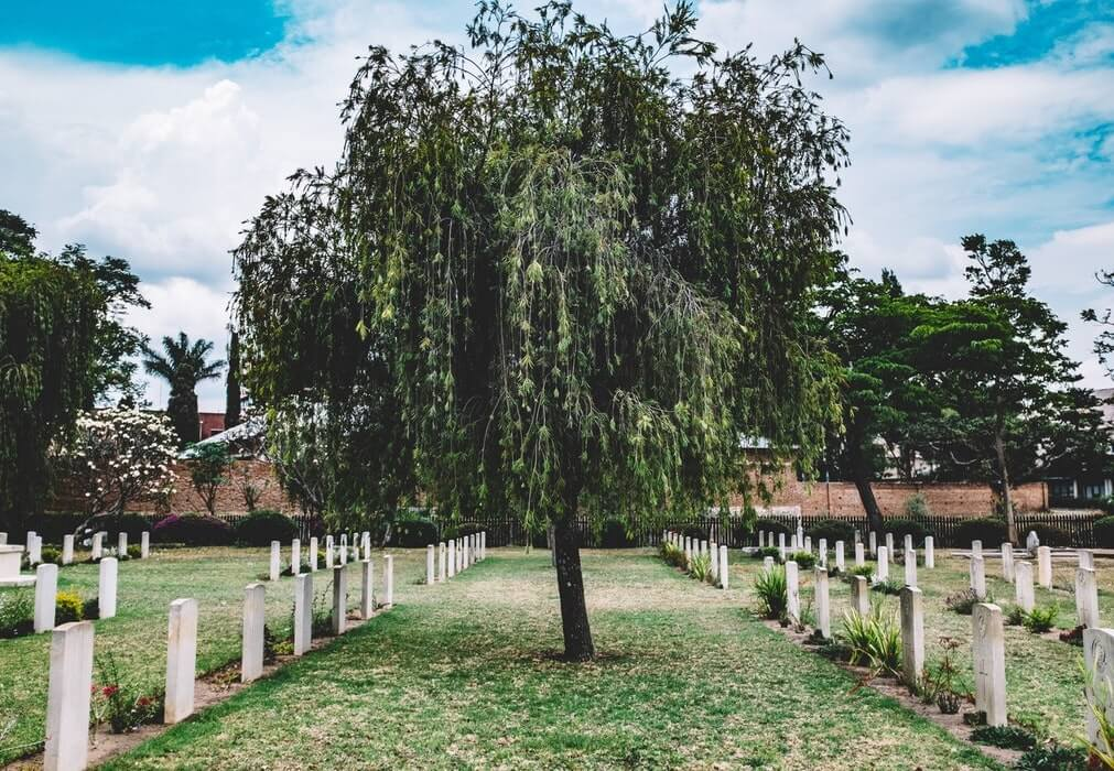 Cementerio que hace referencia a ahorrar mucha y que el dinero no te de la felicidad